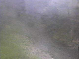 秋野川のライブカメラの様子